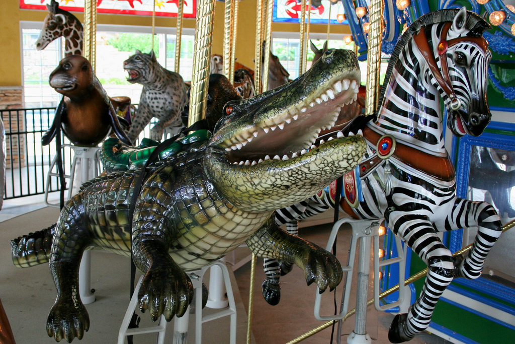 Endangered Species Carousel Turtle Back Zoo
